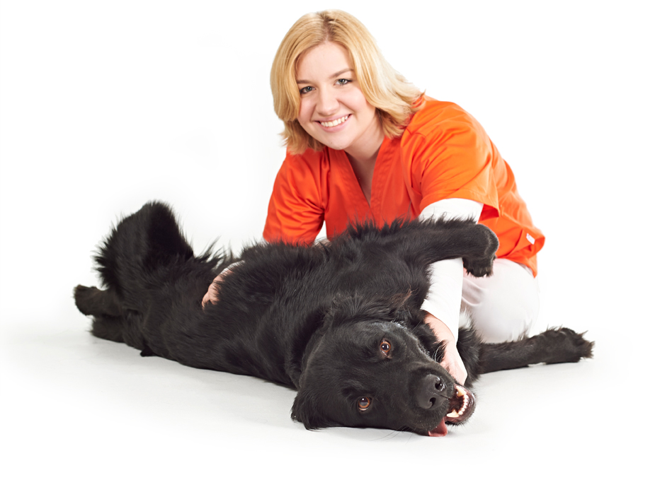 Tierarztpraxis Fürth, Jessica Weiser